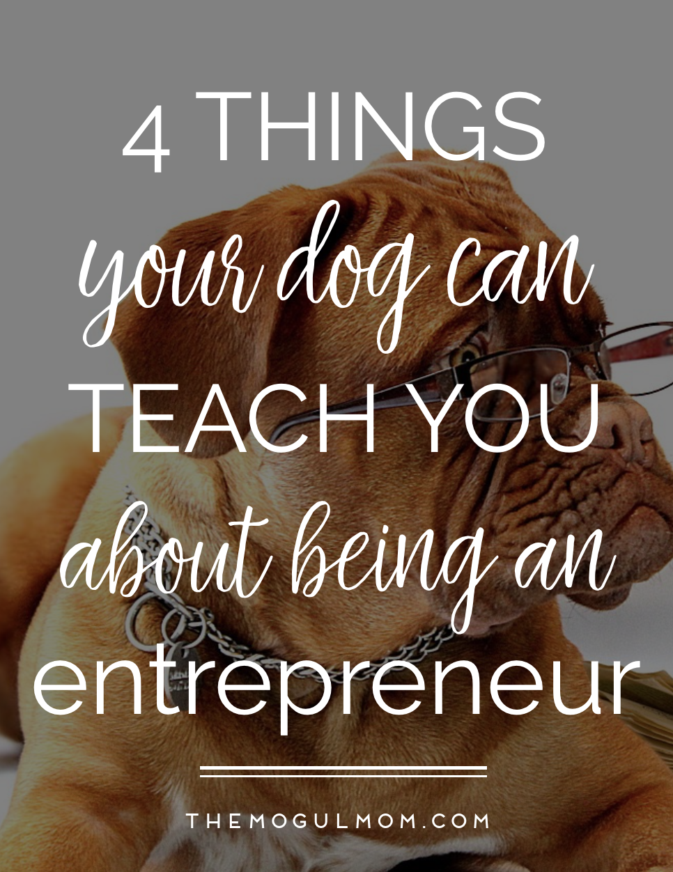4 Things Your Dog Can Teach You About Entrepreneurship