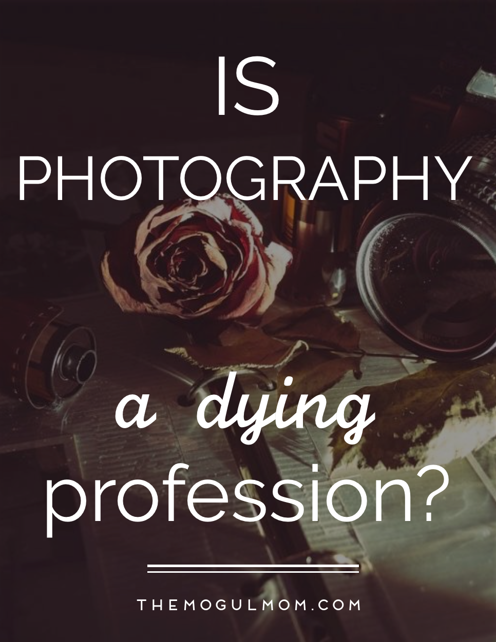 Is Photography A Dying Profession?