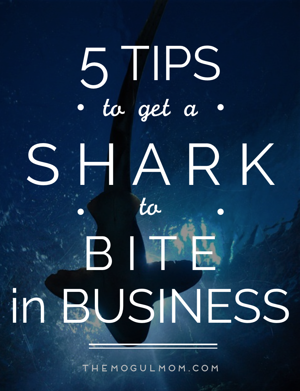 Five Tips to Get a Shark to Bite in Business