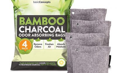 FRESH AIR BY BAMBOO CHARCOAL- WHO KNEW?